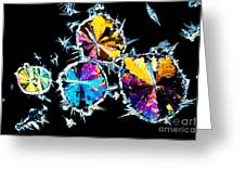 Citric Acid Crystals In Polarized Light Greeting Card