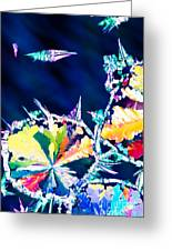 Citric Acid Microcrystals Color Abstract Art Greeting Card
