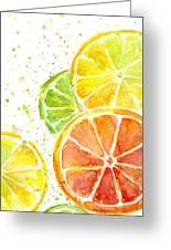 Citrus Fruit Watercolor Greeting Card
