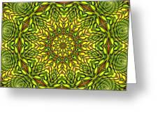 Citrus K12-33 Greeting Card