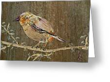 City Bird Greeting Card