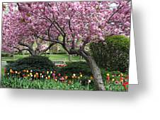 City Blossoms Greeting Card