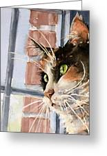 City Cat Greeting Card