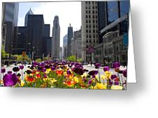 City Of Color Greeting Card