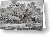 City Park Giants - Paint Bw Greeting Card