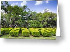City Park New Orleans Louisiana Greeting Card