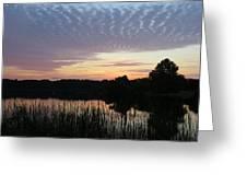City Park Splendor Greeting Card