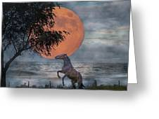 Claiming The Moon Greeting Card by Betsy Knapp