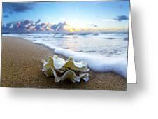 Clam Foam Greeting Card by Sean Davey