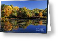 Clark Pond - Auburn New Hampshire  Greeting Card
