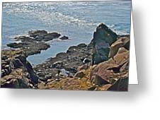 Clashing Tides At Tip Of Cape D'or-ns Greeting Card