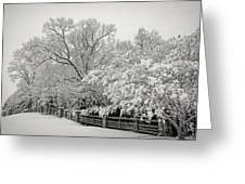 Classic Snow Greeting Card by Carol Whaley Addassi