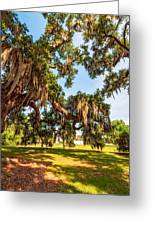Classic Southern Beauty 2 Greeting Card