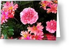 Carnations The Spanish Flower Greeting Card