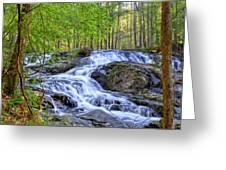 Clay Creek Falls Greeting Card by Bob Jackson