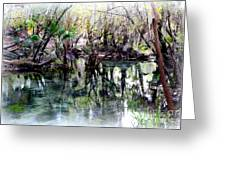 Clear Florida Springs Greeting Card
