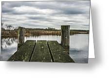 Clear View  Greeting Card