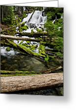 Clearwater Falls Greeting Card