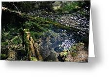 Clearwater Falls Series 17 Greeting Card