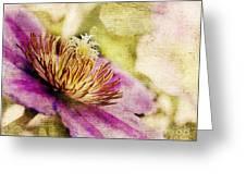 Clematis Closeup Greeting Card