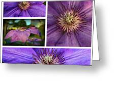 Clematis Collage Greeting Card