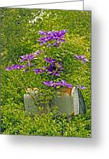 Clematis Vine On Mailbox Greeting Card