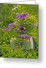 Clematis Vine On Mailbox Photo Art Greeting Card