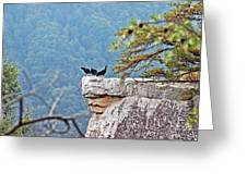 Cliff Hanging Greeting Card