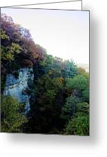 Rock Cliff With Trees Greeting Card