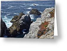 Cliffs And Coastline At California's Point Lobos State Natural Reserve Greeting Card by Bruce Gourley
