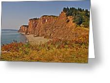 Cliffs Of Cape D'or From A Promontory Over Advocate Bay-ns Greeting Card
