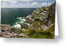 Cliffs Of Kerry Ireland Greeting Card by Dick Wood