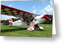 Clipped Wing Cub Greeting Card