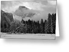 Cloaked In A Snow Storm - Monochrome Greeting Card