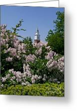 Clock Tower And Lilacs Greeting Card