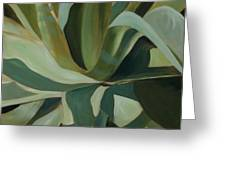 Close Cactus Greeting Card