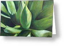 Close Cactus II - Agave Greeting Card