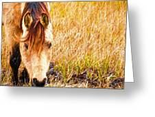 Close Up In The Marsh Greeting Card