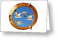 Close-up Of A Boat Closed Porthole With Flying Seagull On The White Background Greeting Card