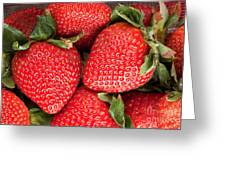Close Up Of Delicious Strawberries Greeting Card