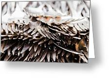 Close Up Of Heap Of Silver Forks Greeting Card
