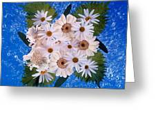 Close Up Of White Daisy Bouquet Greeting Card