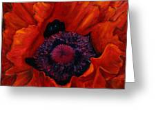 Close Up Poppy Greeting Card