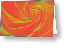 Close-up Rose Greeting Card