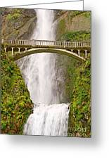 Close Up View Of Multnomah Falls In The Columbia River Gorge Of Oregon Greeting Card