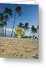 Closed Lifeguard Shack On A Deserted Tropical Beach With Palm Tr Greeting Card