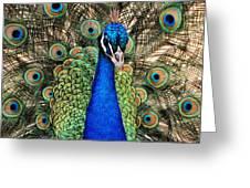 Closeup And Personal Greeting Card