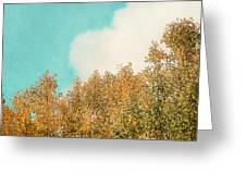 Cloud And Birches Greeting Card