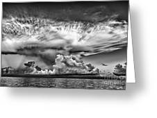 Cloud In Black And White Greeting Card