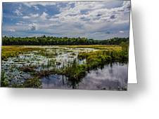 Cloud Reflection In Maine Marsh Greeting Card by Jason Brow